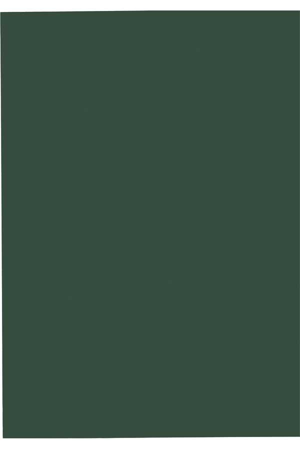 Χαρτόνι τύπου canson 50 x 70 σκούρο πράσινο
