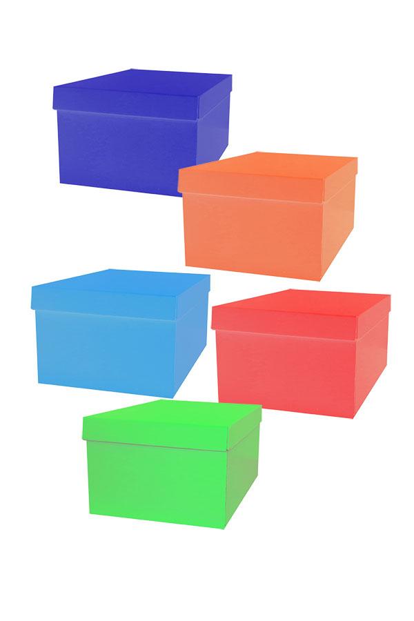 Κουτί αποθήκευσης με καπάκι 25x34x18cm the littlies 000646686