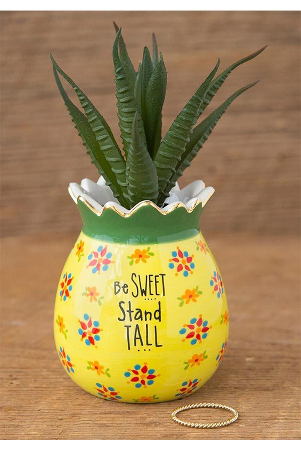 Natural Life γλαστράκι μίνι Ανανάς Be sweet stand tall PLNT037