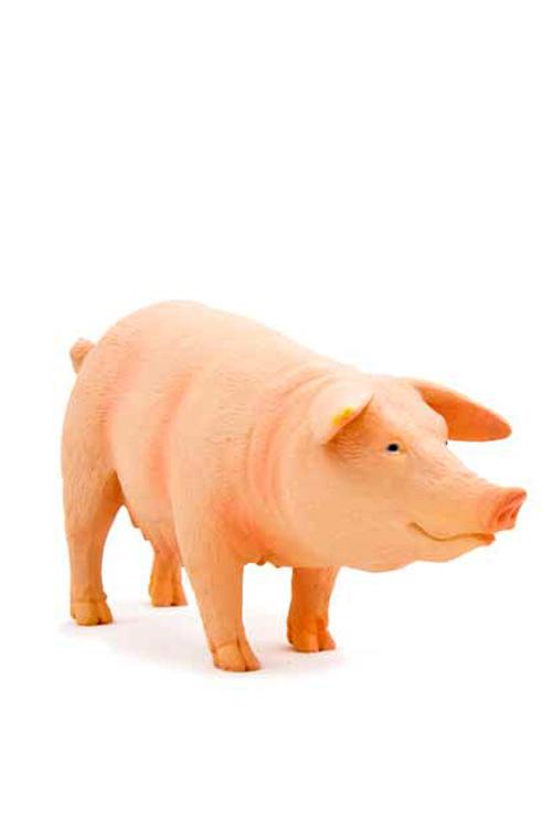 Μινιατούρα Γουρούνα 10x5cm Animal Planet 387054