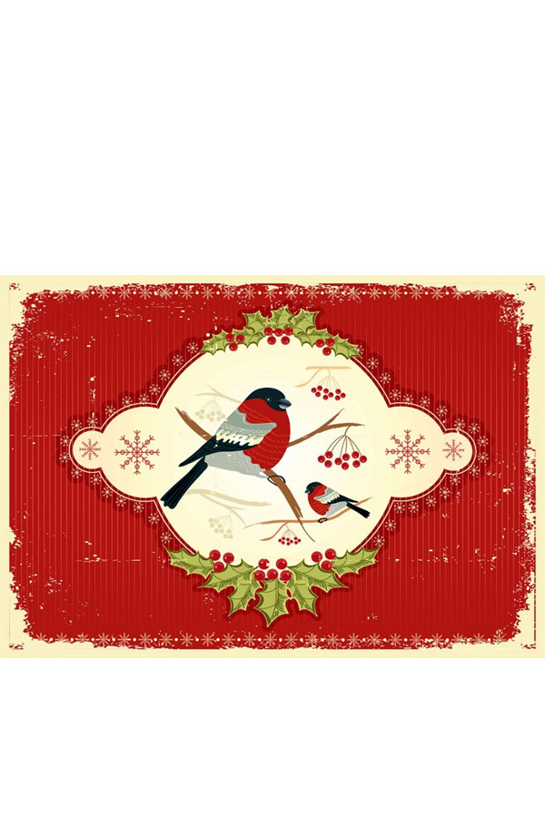 Σουπλά σερβιρίσματος Χριστουγεννιάτικα 2τμχ SKAG 243865